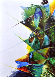 FORBIDDEN SYMMETRY 9 / Coloured Pencil, Ink, Edding, on Paper (42 x 29.5cm) 2015 by Julian Lee
