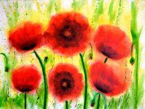 Mohnblumen Blütenzauber by Renate Münch