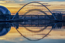 Bridges over the Tyne von David Pringle