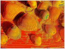 ~  Mussels ~ von Sandra  Vollmann