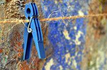 Blau gehalten von Nicola Furkert