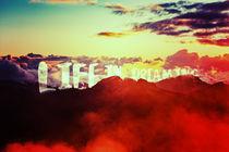 Life in Dreaming von Diego de Luna