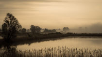 Teich im Nebel, sepia by Franziska Mohr