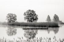 Nebel über den Teichen s/w von Franziska Mohr