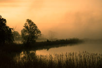 Nebel über dem Teich im Morgengrauen von Franziska Mohr