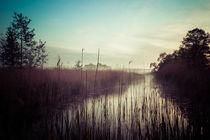 Fluss im Nebel farbig by Franziska Mohr