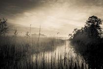 Fluss im Nebel s/w by Franziska Mohr