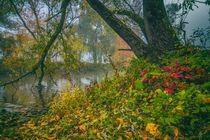 Herbststimmung by daniel-herr