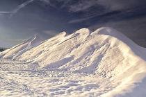 Winter in der Au -in the sun von Chris Berger