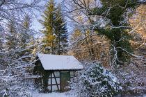 Hütte im verschneiten Wald Naturpark Schönbuch von Matthias Hauser