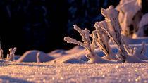 Winterimpression von fakk