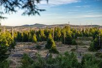 Blick auf den Wurmberg by fakk