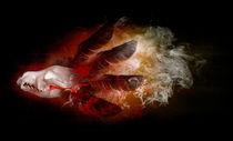 Totem by Pascal Cavegn