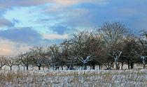 Ein bisschen Winter... von Marion Bönner