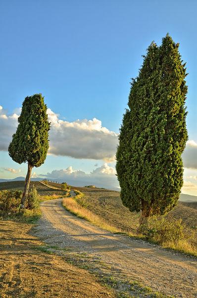 Trail-tuscany