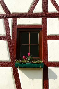 Fenster in Röttingen by gscheffbuch