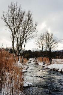 Grey day at Attel creek von Thomas Matzl