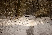 Frozen Creek by aseifert