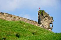 North Tower, Tutbury Castle von Rod Johnson