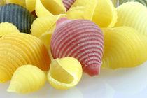 Conchiglie Multicolore | Bunte Pasta von lizcollet