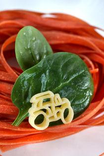 Nudeln vom Eigenerzeuger | Pasta von lizcollet