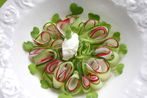 Bavarian Carpaccio With Cucumber, Radish and Creamy Cheese III by lizcollet