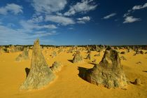 Nambung Nationalpark (Western Australia) by usaexplorer