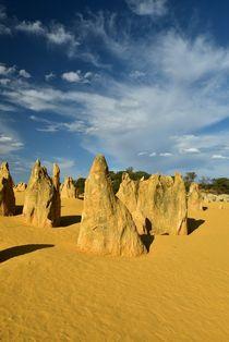 Nambung (Australien) by usaexplorer