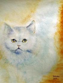 Weiße Katze by Irina Usova