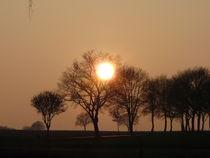 Abendsonne bei Thomasburg 2014 No. 5 by Simone Marsig