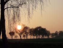Abendsonne bei Thomasburg 2014 No. 4 von Simone Marsig