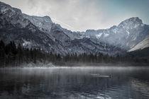 Line of fog on the Lake von Gerhard Petermeir