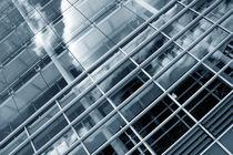 Gläserne Strukturen | Transparenz von lizcollet