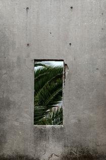 Fragment, Valparaiso, Chile von Gytaute Akstinaite