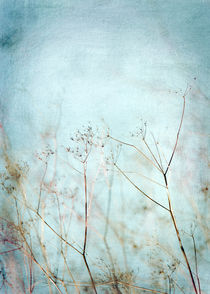 Blue sky scrubs by Josephine Mayer-Hartmann