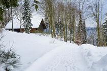 Winterwald im Sauerland von Heidi Bücker