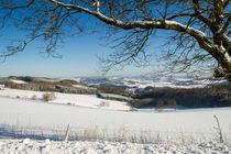 Hawerlandblick im Winter von Heidi Bücker