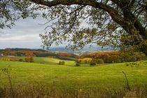 Hawerlandblick im Herbst von Heidi Bücker