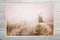 Wasserschöpfmühle in Neustadtgödens | Friesland by sven-fuchs-fotografie