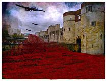 Poppies at the tower von sylvia scotting