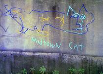 Midtown Cat, Atlanta by Alan Mogensen