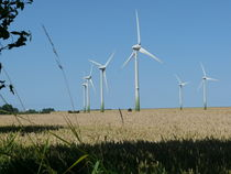 Windräder im Kornfeld auf Fehmarn von Simone Marsig