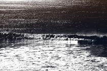 Surfen  von Bastian  Kienitz