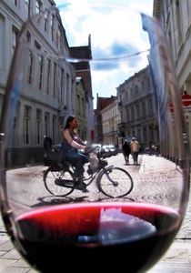 Whats in a glass of wine von sylvia scotting