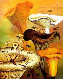 Mushroom Forest von Sherri Leeder