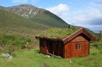 the cabin von hannes-bielefeldt