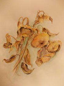 verblühte Schönheit by Dorothy Maurus
