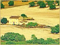 Mallorquinische Landschaft von Sandra  Vollmann