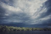 Amazonas II von Florian Jung