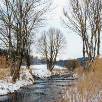 On a winters day von Thomas Matzl